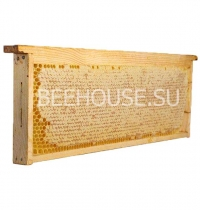 Мёд в сотах (магазинная рамка)